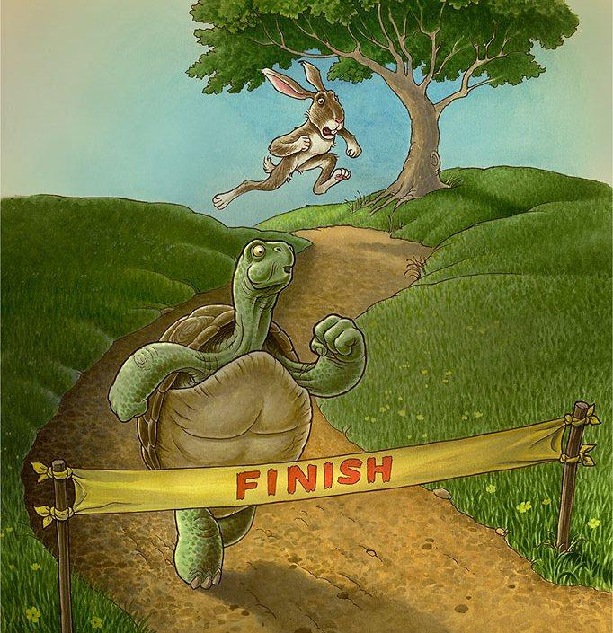 заяц и черепаха